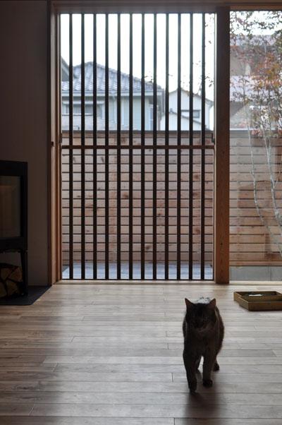 猫脱出防止戸