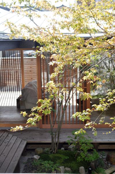 コートハウス植栽